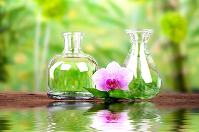 Kosmetik ohne Chemie, Biokosmetik, Naturkosmetik Helena Paulus